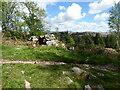NY1301 : Old wall in Miterdale Forest by Adrian Taylor
