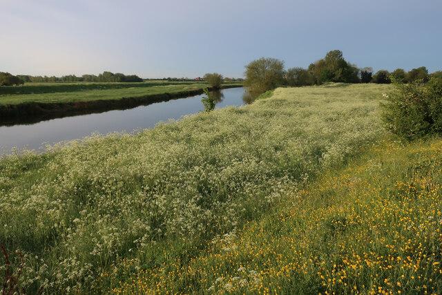 River Cam near Waterbeach