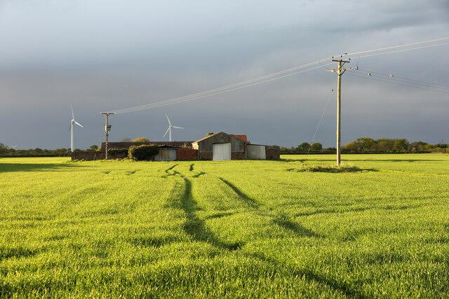 Spike Farm
