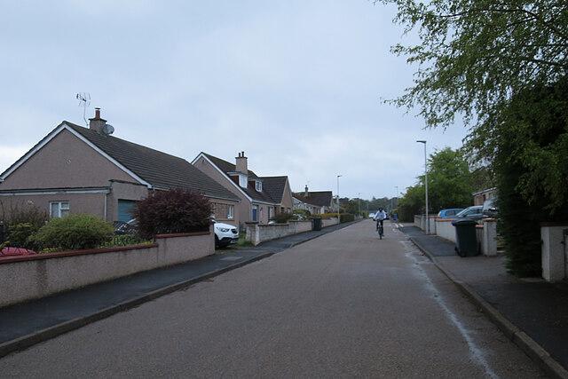 Rain-soaked Street