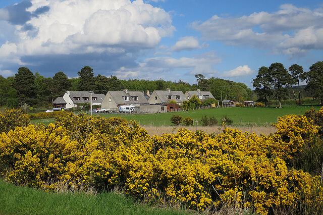 County Houses