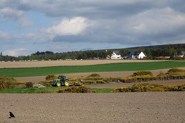 Farmland at Birnie