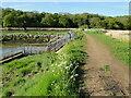 TM2547 : Sluice at Martlesham Creek by Adrian S Pye