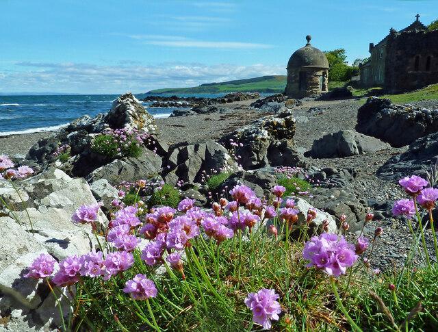 Culzean shoreline view