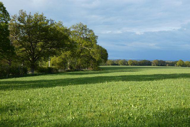 Farmland, West Woodhay