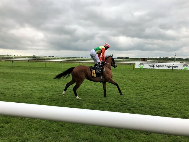 Cantering to the starting stalls on the Rowley Mile