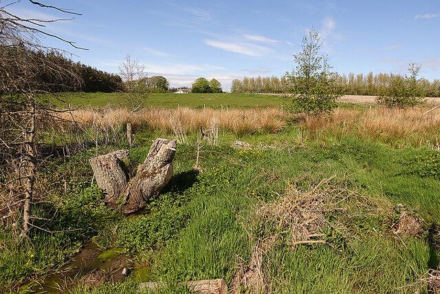 Wet Ground near Arradoul