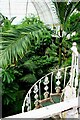 TQ1876 : Inside the Palm House, spiral staircase to upper level, Kew Gardens by Martin Tester