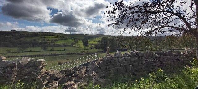 Damaged Drystone Wall near Greystone Farm