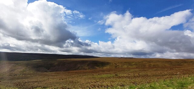 Moorland above Long Cleugh
