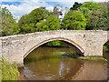 NU2406 : River Coquet, Warkworth Medieval Bridge by David Dixon