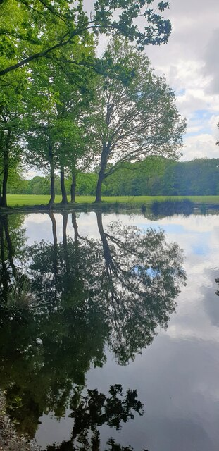 Trent Park Reflections