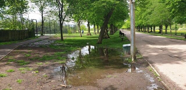 Large Puddle near Main Drive, Trent Park