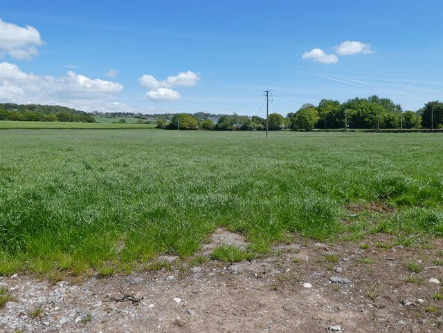 Field, north of Nates Lane