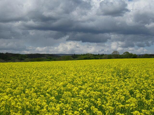 Near Keldholme