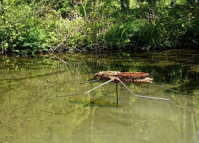 Pond Skater sculpture at Culzean Country Park