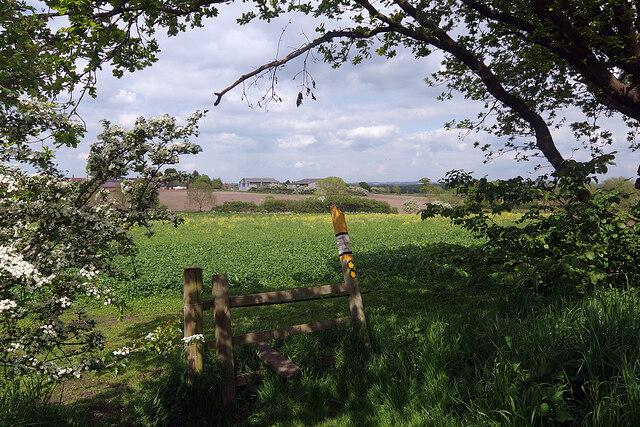 Path by Twycross Church