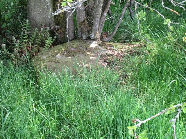 Stone trod near Hunter Sty Bridge 3