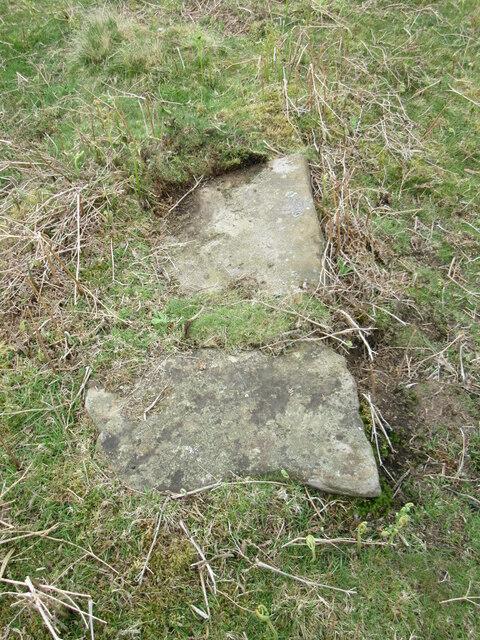 Stone trod near Bagdale House 2