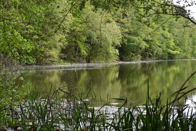 Lake at Alderbury