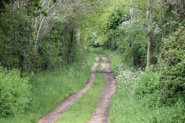 Track east from Witherington Road