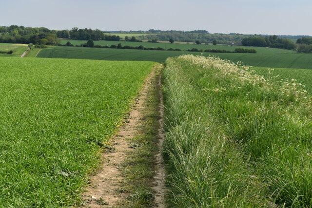 Path between fields south of Alderbury