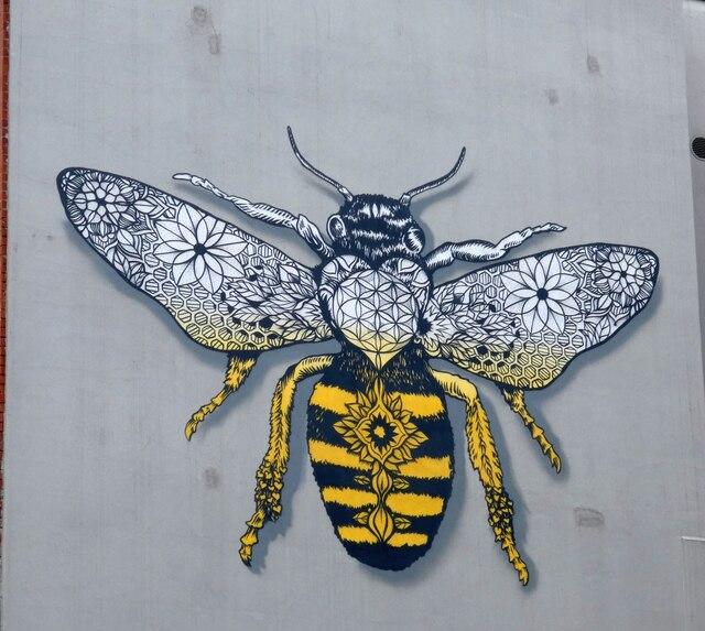 Houldsworth Street Bee