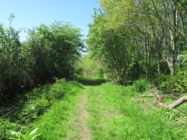 Bridleway near Angram Grange
