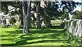 SE1785 : Jervaulx Abbey boundary wall by Rich Tea