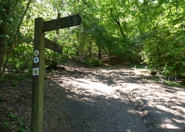 North Worcestershire Path at Lickey Hills