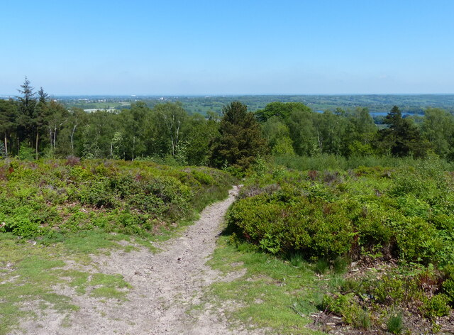 Cofton Hill at the Lickey Hills Country Park