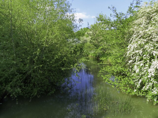 The River Cherwell by Spiceball Country Park