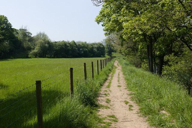 The Nidderdale Way near Darley Beck