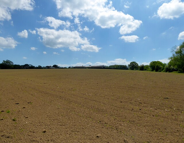 Five Acres/Toll Shaw Field/Arable Piece/Common Piece