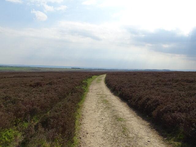 Tabular Hills Walk