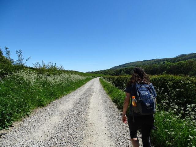 Esk Valley Walk