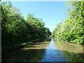SJ5680 : The Bridgewater Canal, north of Preston Brook tunnel by Christine Johnstone