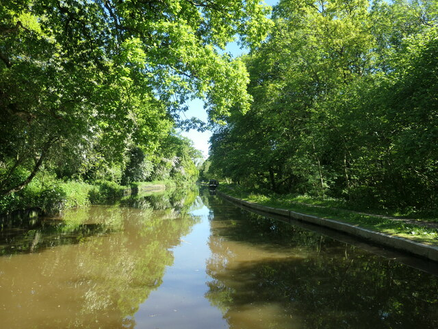 Trent & Mersey Canal, near Longacre Wood
