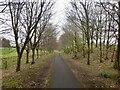 NS5679 : Strathkelvin Railway Walk by Richard Webb