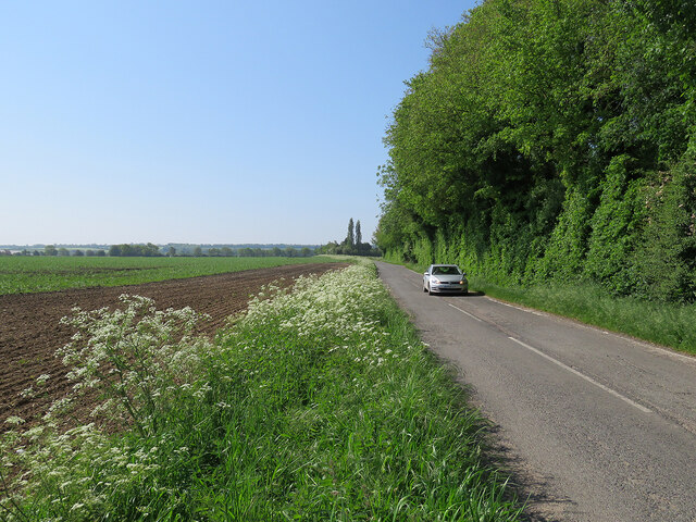 Early summer on Comberton Road