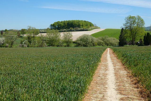 Farmland, Shalbourne