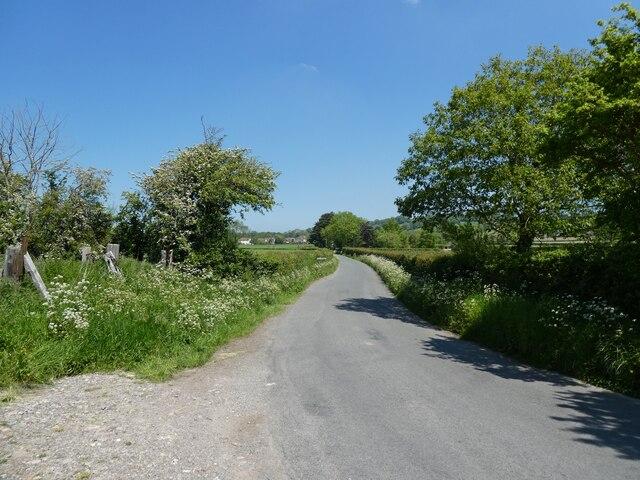 Beech Lane