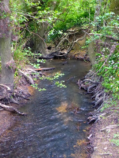 Kent Water