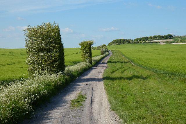 Track and farmland, Grafton