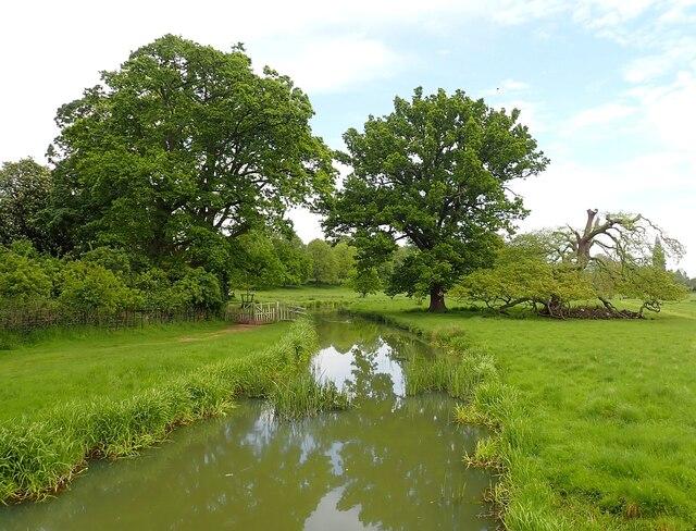Charlecote Estate - River Dene