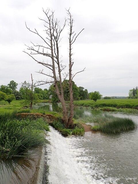 Charlecote Estate - River Dene weir as it joins the Avon