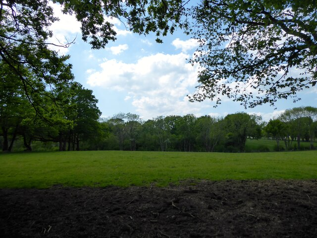 Coomb Field