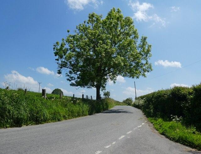 Lane to Hembridge