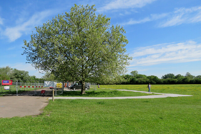 Coldham's Common: a temporary path