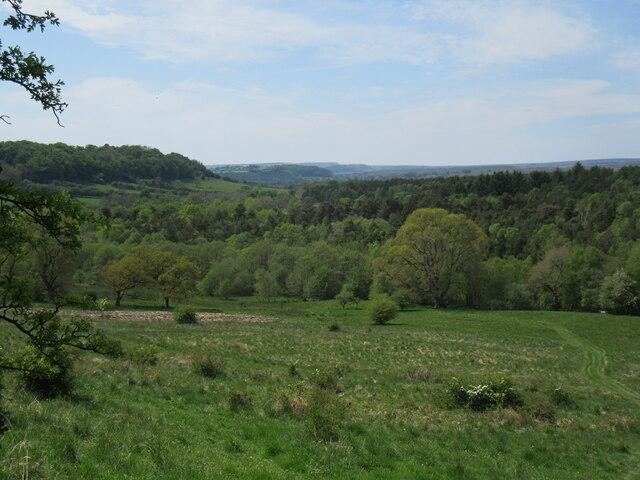 Cawthorn Banks
